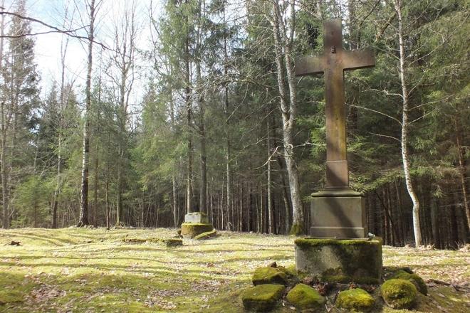 Biržuvėnai manor homestead Gorskiai family old cemetery
