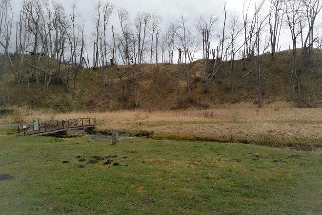 Pliny Mound