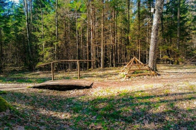 Jomants Forest Cognitive Trail