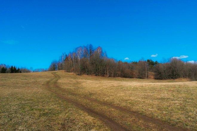 The mound of Žąsūgala (Baltininkai)