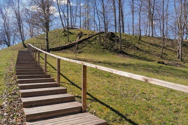 Mound of Džiugė (Džiuginėnai)