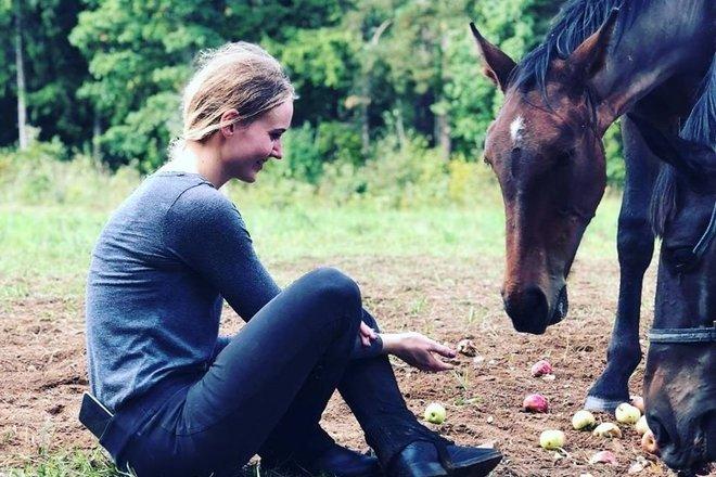 Ruma zirgi