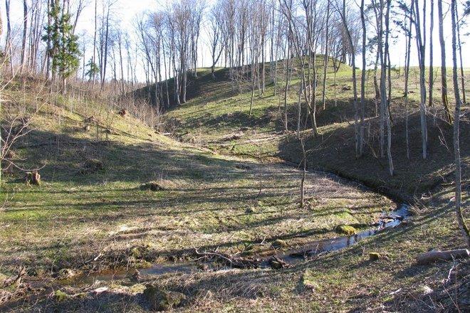 Mound of Vembuta / Vydmantai